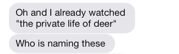 private life of deer netflix