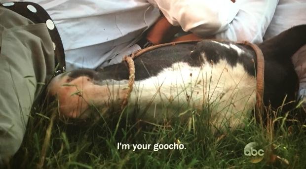 goocho bachelorette