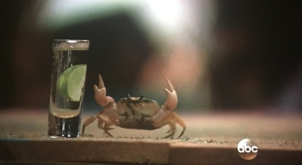 crab tequila