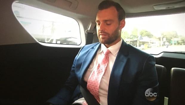 seatbelt robby
