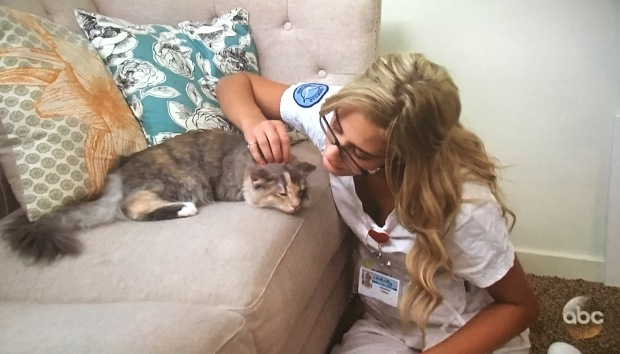 cat-nurse-bachelor-nick