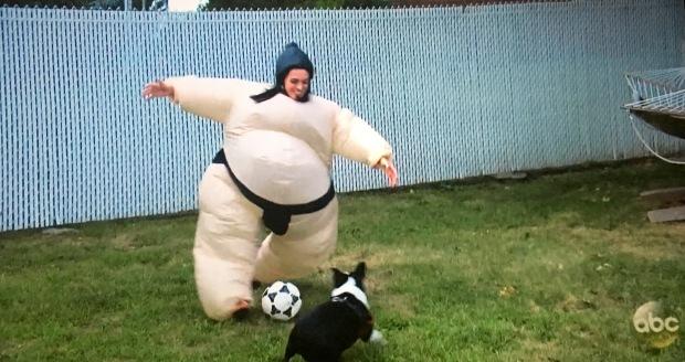 sumo soccer suit.JPG