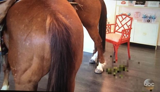 green horse poop bachelorette