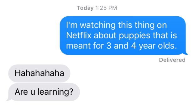 netflix and puppies