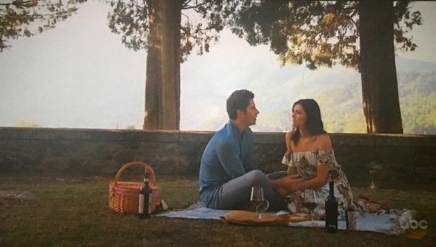 arie becca k picnic bachelor