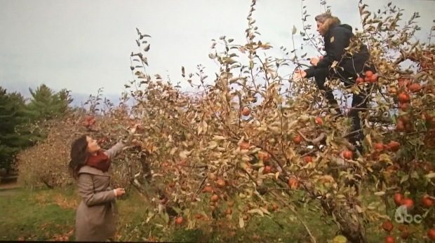 becca arie bachelor hometowns apple picking.JPG
