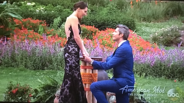 arie proposing to becca.JPG